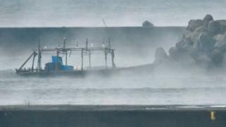 """神秘的""""幽灵船""""不断被冲上日本的西海岸"""