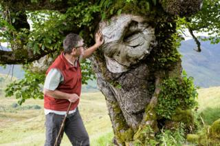 The Last Ent of Affric