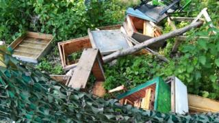 The damaged beehives