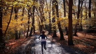 Woman jogging through wood in north London