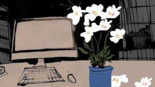 Una ilustración de un escritorio y una planta