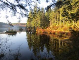 View of Lochan a'Ghleannain