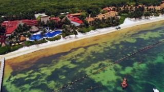Aerial view of a containment barrier to try to keep Sargassum away from the beach of a luxury hotel in Puerto Morelos, Quintana Roo state, Mexico, on 15 May