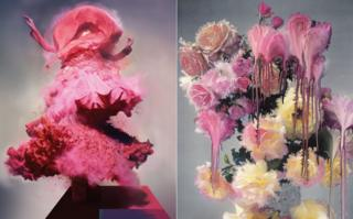 Lilly and Pale Rose paintings by Nick Knight
