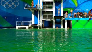 緑色に変色したプール