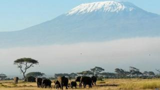 Mlima Kilimajaro