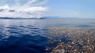 Как очистить океан