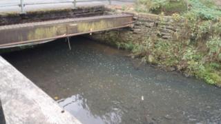 River Medlock pollution