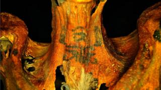 Татуировка на шее мумии