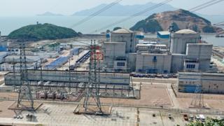 中廣核寧德核電基地的茶園(前)與核電一期項目(8月7日攝)。