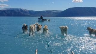 استفان اولسن اقلیم شناس این عکس را هنگام عبور از لایه یخی روی دریا که درحال ذوب شد ن است گرفت