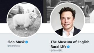 A picture of two Twitter profile pictures, on the left Elon Musk with a sheep as his picture, on the right the Museum of Rural English Life with Elon Musk as its picture.