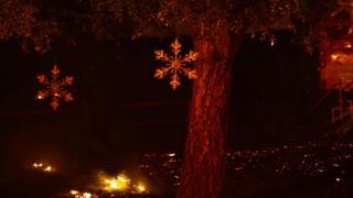 Árboles con adornos navideños en Bonsall, California, donde arde el incendio Lilac