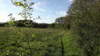 Proposed natural burial ground near Drefelin