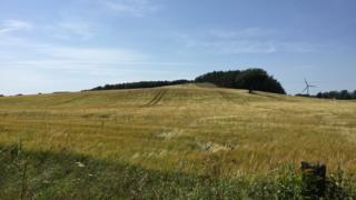 Field beside Pilmuir Road