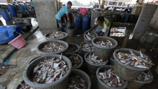 To match Thomson Reuters Foundation story THAILAND-FISHING/ REUTERS/Chaiwat Subprasom