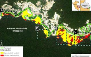 Imagen satelital de la deforestación en la Reserva Nacional Tambopata, en Madre de Dios, Perú.