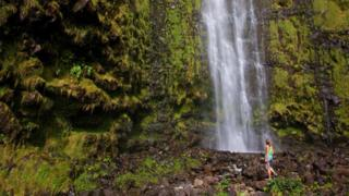 """夏威夷语中的""""荷欧波诺波诺""""通常被理解为自我宽恕。"""