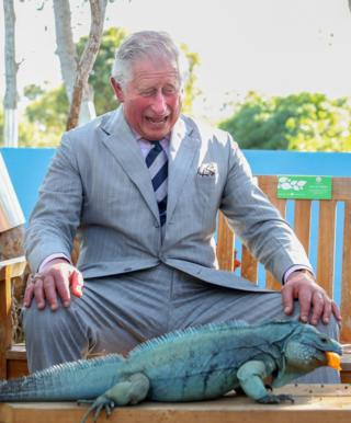 Britain's Prince Charles laughs at a iguana