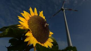 Ветряные мельницы в городе Твист, Германия