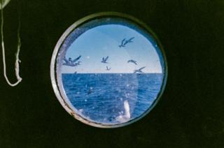 Seagulls and the sea seen through a porthole