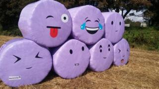 Painted straw bales