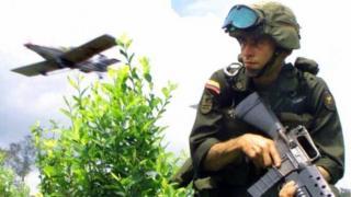 Soldado erradicador