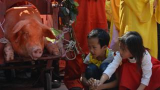 Lễ chém lợn Ném Thượng, Bắc Ninh