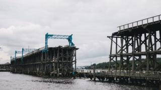Wildlife Conservation Awareness - The missing 50m section of Dunston Staiths
