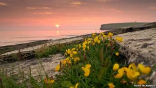 Marwick sunset in Orkney