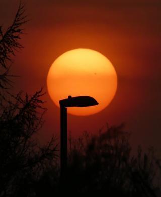 A streetlight silhouette