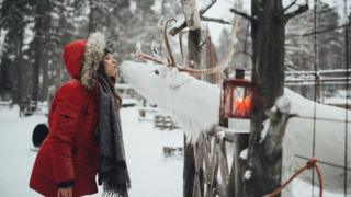 A white reindeer and a woman in Finland