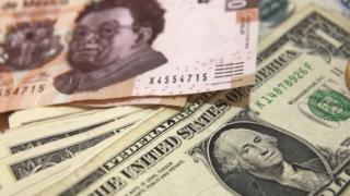 dólares y pesos mexicanos