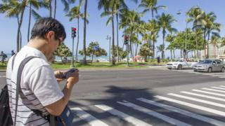 man texting at a zebra crossing in Honolulu