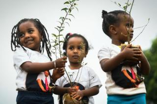 Young Ethiopian girls take part in a national tree-planting drive in the capital Addis Ababa - 28 July 2019