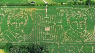 Tom-Pearsys-Maize-Maze.