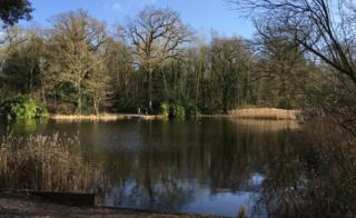 Beechwater Pond, Chantry Park, Ipswich