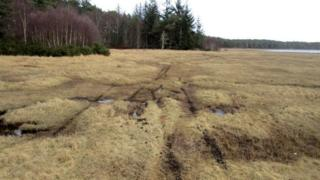 Damage to Loch Fleet reserve
