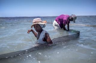 海参养殖户正在加固他们的养殖围栏