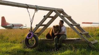 Mansur the Russian bear who lives at an airfield, 2019