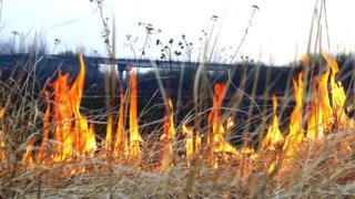 Трава палає
