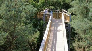 Tree Top Way in Northamptonshire.