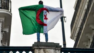 معارض جزائري