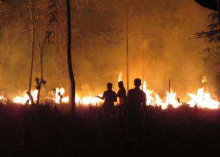 "This handout photo taken on 25 September 2015 and released on 9 October 2015 by the Borneo Orangutan Survival Foundation shows fires continuing to rage late at night at the Samboja Lestari Orangutan Reintroduction Program site in Samboja, in Indonesia""s East Kalimantan"