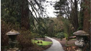 Castlewellan Arboretum and Annesley Garden