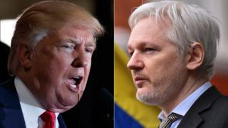 Trump and Assange