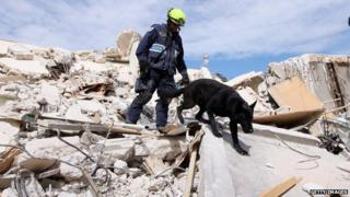 A US rescuer and search dog look through rubble in the wreckage