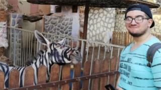painting donkey to look like a zebra