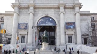 O Museu Americano de História Natural