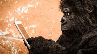 Modern portrait of a gorilla interacting with a tablet.